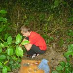 hunting for minibeasts