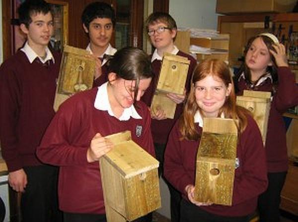 Over 50 Bird Boxes Made!
