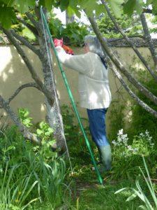 roots-may-2010-3-674