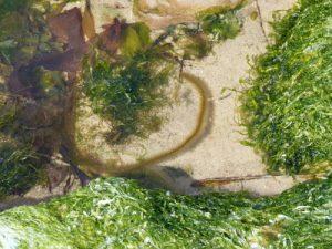 roots-may-2010-3272