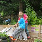building an african garden