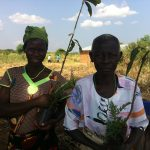 Local people with donated trees