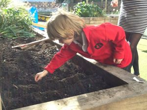 Learning how to plant seeds
