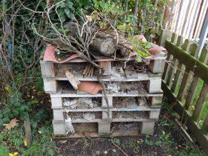 gardening club (6)