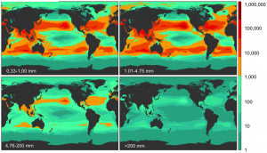 Model results for global count density of ocean borne plastics in four size classes