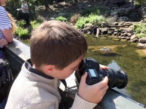 Taking photos of the otters at London Wetlands Centre