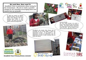 2015 SCPS Bees roots shoots  copy
