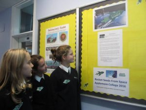 Year 7 students reading all about Rocket Science on the noticeboard.