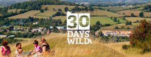 Go wild! #30DayWild Copyright The Wildlife Trusts