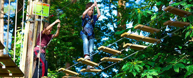 Playing at a Go Ape centre, copyright Forestry Commission http://www.forestry.gov.uk/images/Go-ape-junior-2014.jpg/$file/Go-ape-junior-2014.jpg