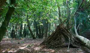 Forest den for children