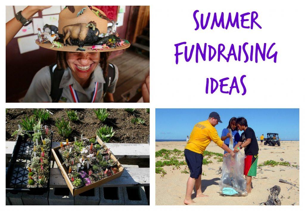 rootsnshoots_summer_fundraising_ideas