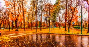 Image courtesy of Valerii Tkachenko - Cityscape Paris raining autumn via Wikipedia