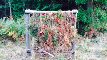 Wild arts and crafts for autumn