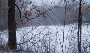 Frozen Pond (2280755283) by Tony Webster CC BY 2.0