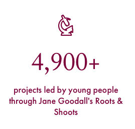 projects by Roots & Shoots members worldwide