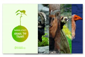 Twinning: Animal Top Trumps