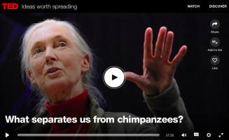 Some of our favourite Jane Goodall videos