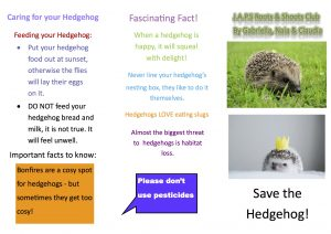 Hedgehog friendly booklet 2 copy