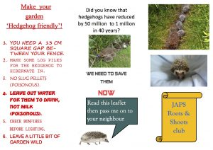 hedgehog leaflet by emily Humphreys copy
