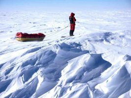 Follow an amazing journey to the Antarctic!