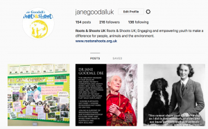 Image of Roots & Shoots UK Instagram homepage