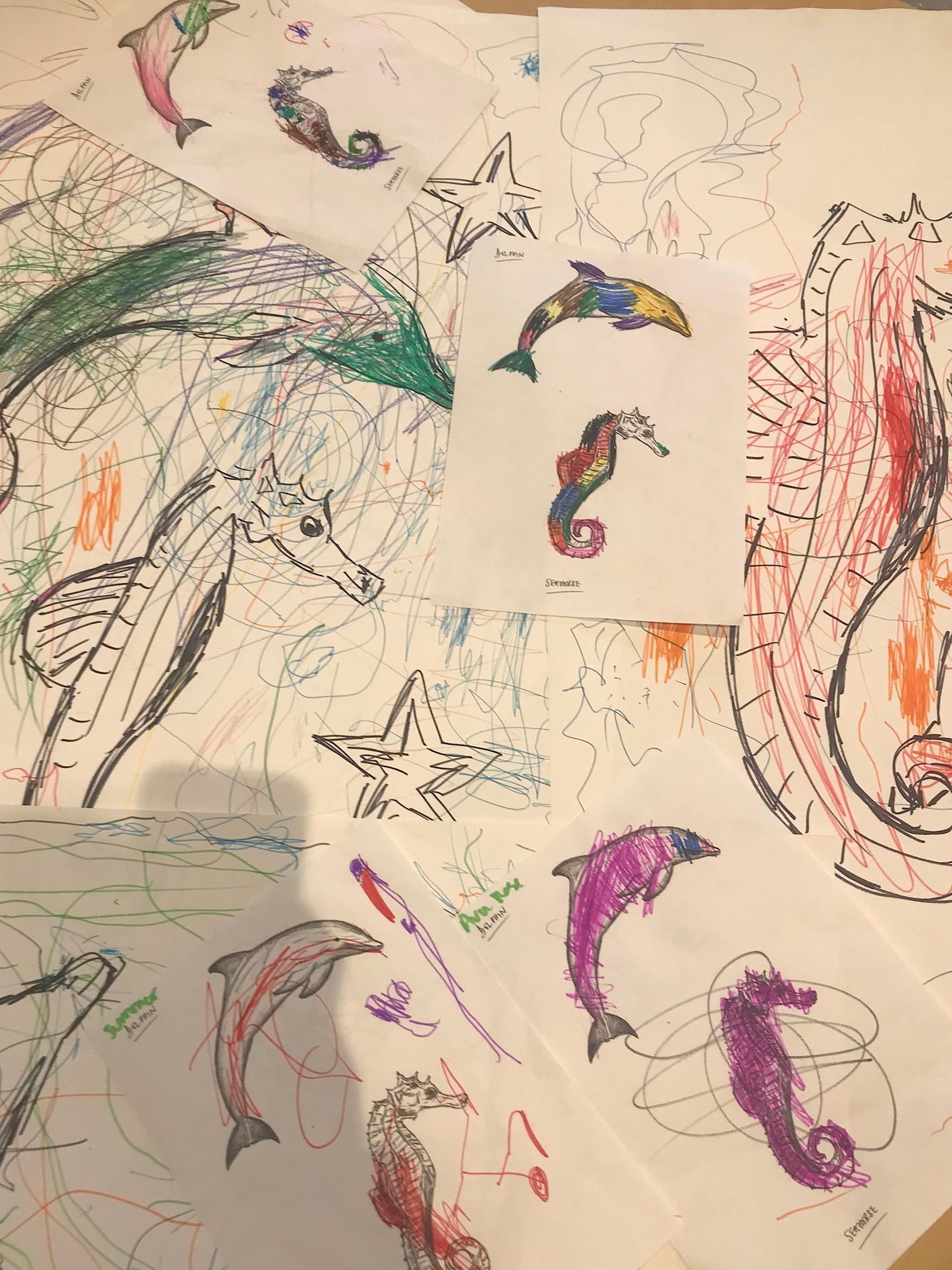 Dolphins Workshop 1 - 23.01.19.JPG