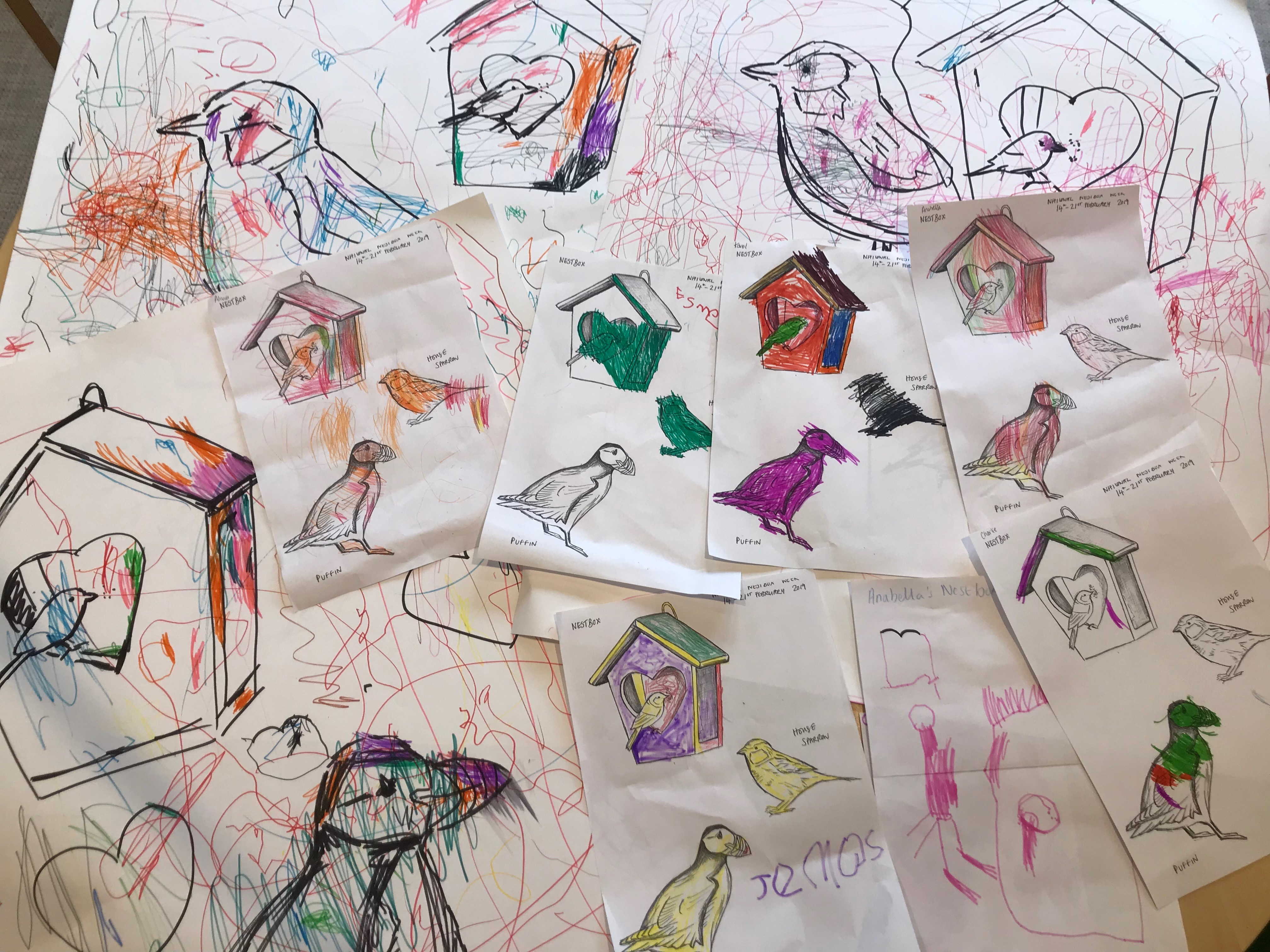 Drawings of Nest Boxes - Workshop 3 - Spring Term - 07.02.19