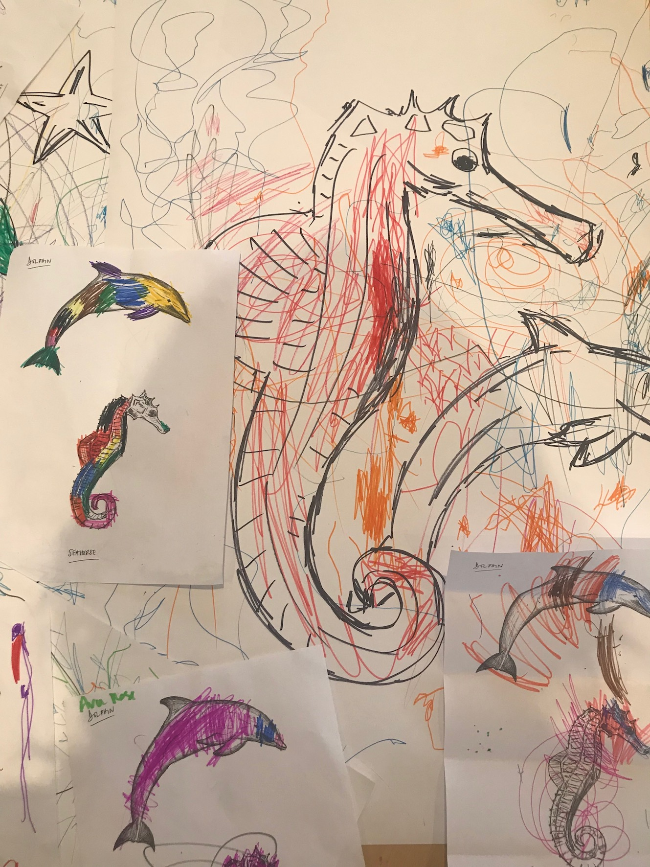 Seahorse Drawings Workshop 1 - 23.01.19