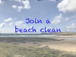 Join a beach clean and clear up our coast!
