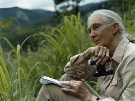 Becky Anderson, CNN: In these 'very dark times,' Jane Goodall explains why she is still hopeful