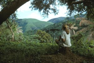 Jane looking out over the forest, photo credit the Jane Goodall Institute