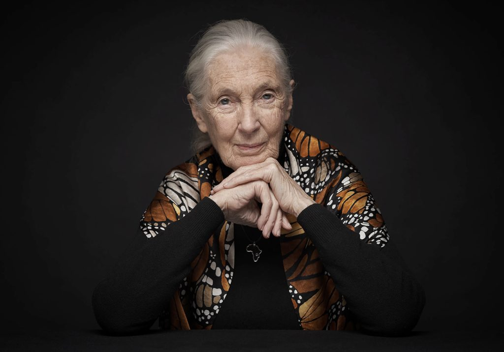 Photo of Dr Jane Goodall against a black background. Jane is wearing a shawl patterned with orange, black and white butterfly wings