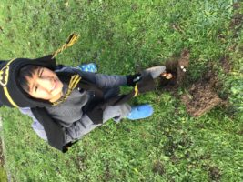 Sandfield Close Primary School – In Touch with Nature Project update
