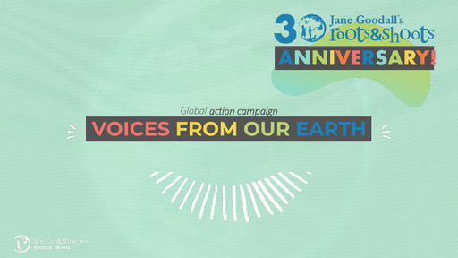 Pale green box with the words 'voices from our earth' written in colourful writing across the middle, and the '30th anniversary' logo in the top right hand corner