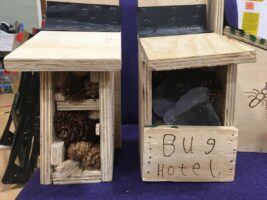 Homes for our local wildlife