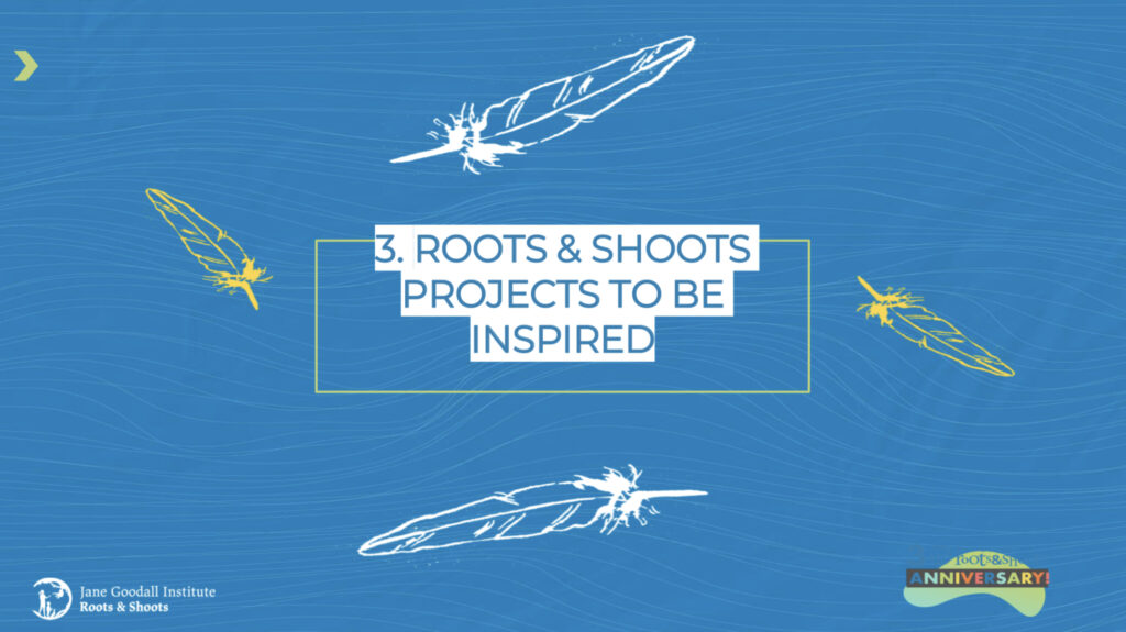 A blue slide with two white feathers drawn on it, and the words '3. Roots & shoots projects to b be inspired' in white and blue writing