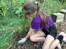 Planting for International Day of Peace at Goat Lees Primary School