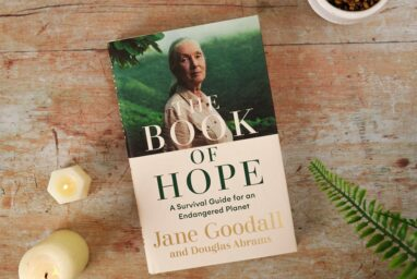 Dr Jane Goodall's new book – The Book of Hope – OUT NOW!